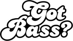 GotBass-300x170
